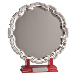 Driver Replica Trophy