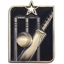 Gold Cricket medals