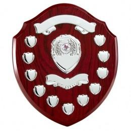 Annual 11 Year Shield