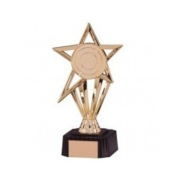 Budget Star Award - 2 Sizes - Gold/Silver
