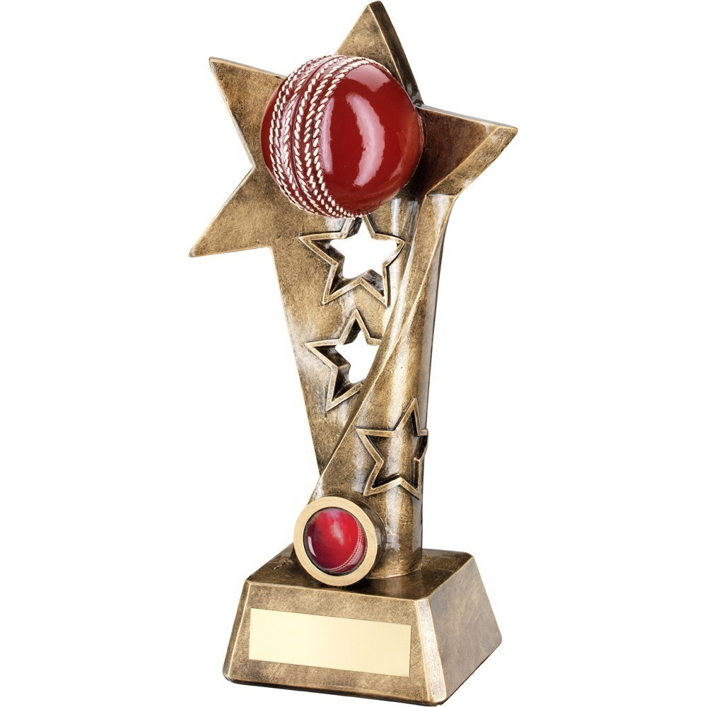 Coloured Cricket ball on star stand - 3 sizes