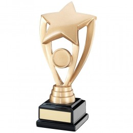 Resin Star Award on black base - 3 sizes