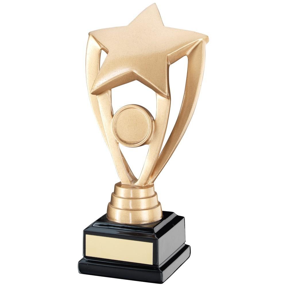 Resin Star Award on black base - 3 sizes