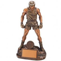 Ultimate Boxer Award - 4 sizes