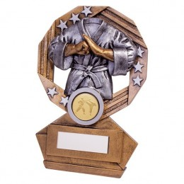 Martial Art Trophy Award