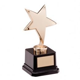 Nickel Gold Star