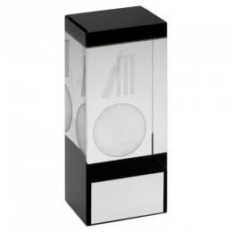 Cricket Hologram Glass Block Award