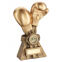 Gold Boxing glove Trophy