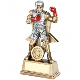 2 Tone Boxing Trophy