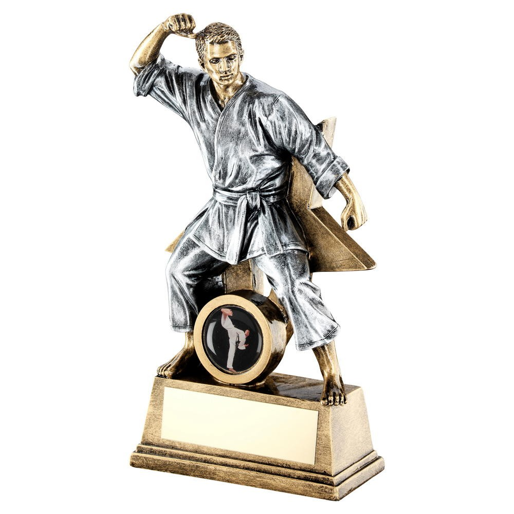 Male ENGRAVED FREE Karate Martial Arts Resin Trophy Award